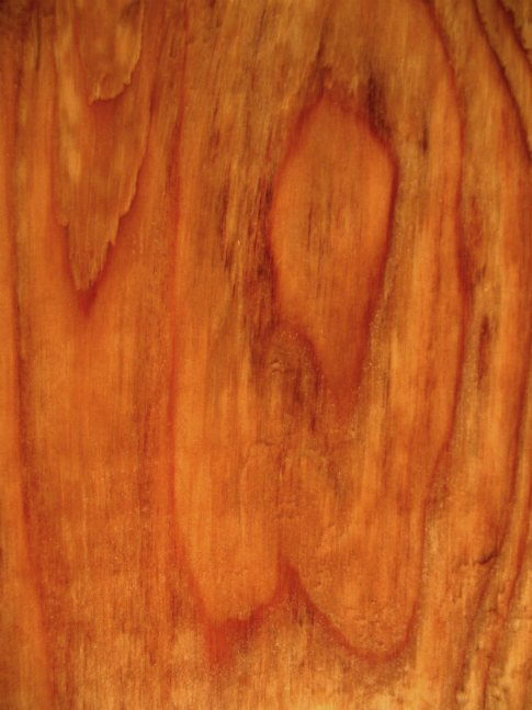 Free Texture Tuesday: Damp Wood