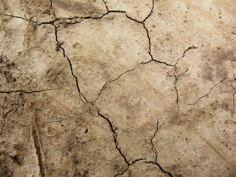Free Texture Tuesday: Cracked Dirt