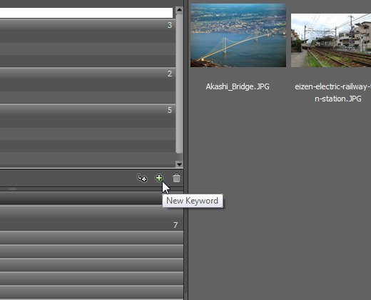 add new keyword adobe bridge