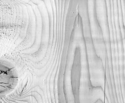 Subtle wood brushes пять кистей с текстурой