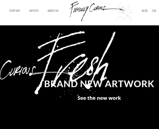 fiercely curious homepage dark shopify