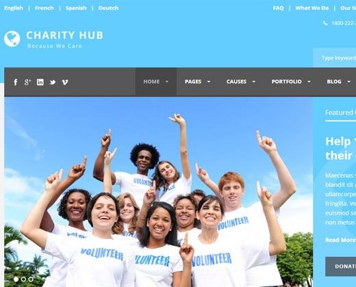 charity hub nonprofit theme blue colors
