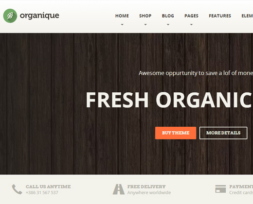organic premium healthy food wordpress