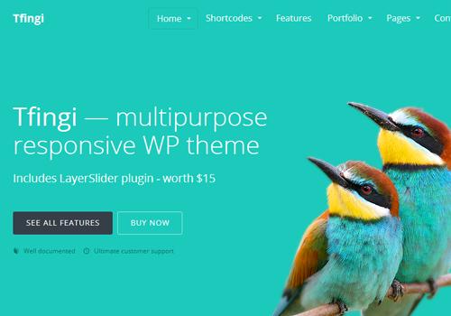 plain text wordpress tfingi premium theme