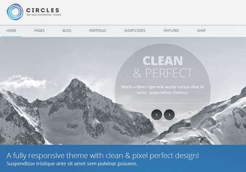 circles premium wordpress theme business template