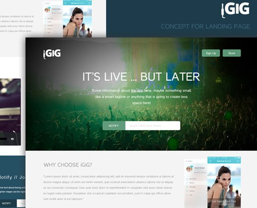 igig landing page website design