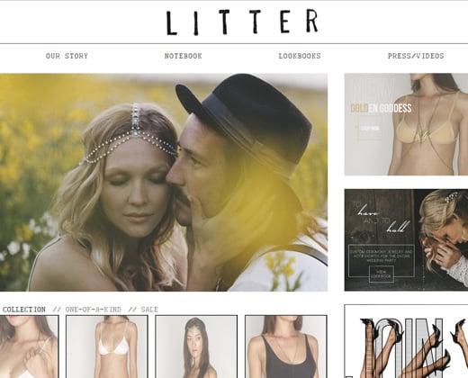 clean simple litter shopify website design