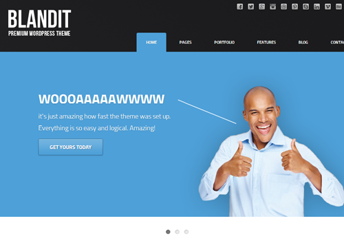 blandit wordpress business portfolio theme