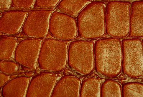 Free Texture Tuesday: Leather 3