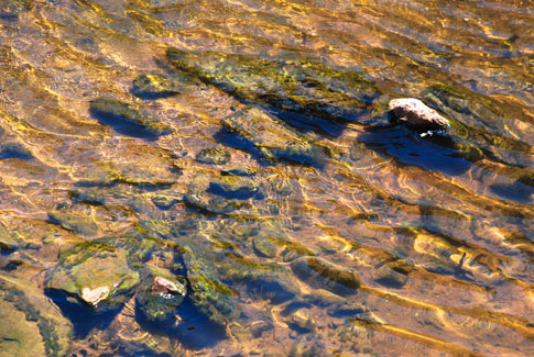 Free Texture Tuesday: Shallow Creeks