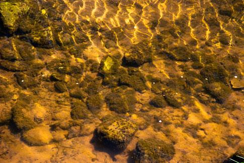 Free Texture Tuesday: Shallow Creeks
