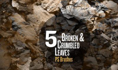 Broken Leaves brushes promo image