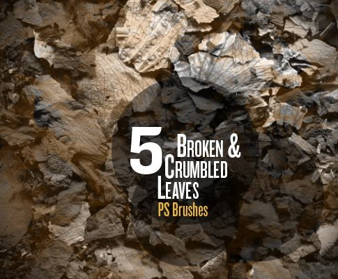 Broken Leaves brushes promo image