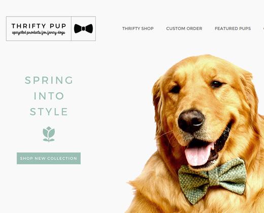 thrifty pup online startup website